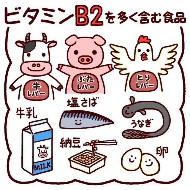 ビタミンB2.jpg